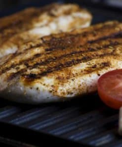 electric grilled meals