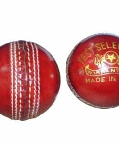 Cricket Ball 156gr Leather