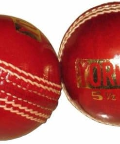 INDOR CRICKET BALL YORKER