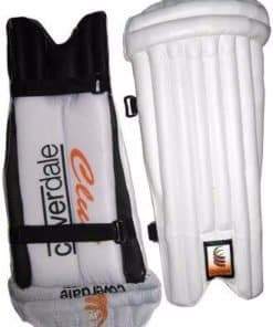 Wicket Keeping Pad (2)