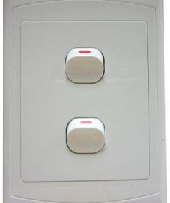 Two Lever Switch 4 x 2 inch